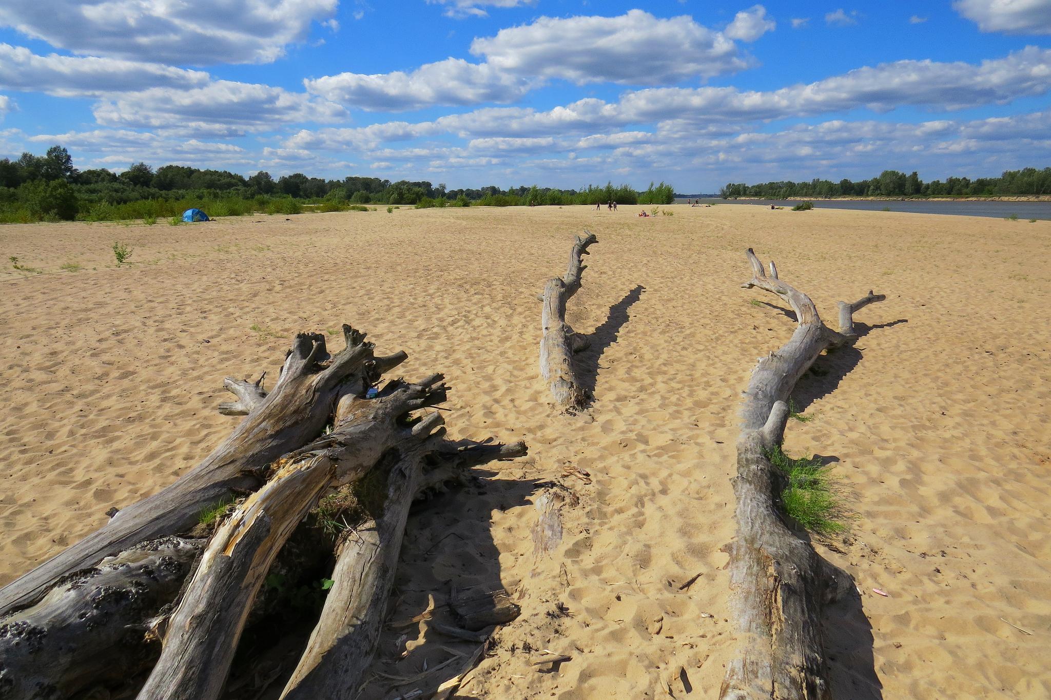 plaża10small