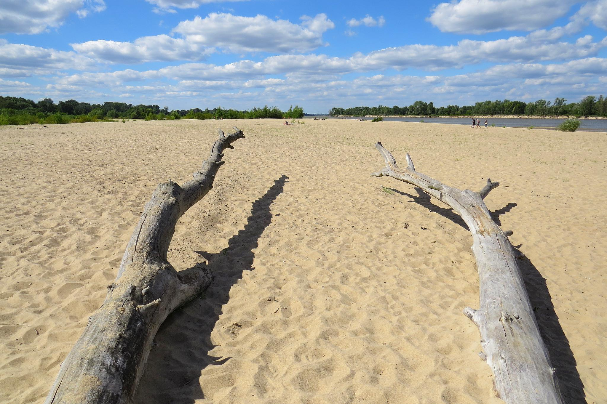 plaża2small