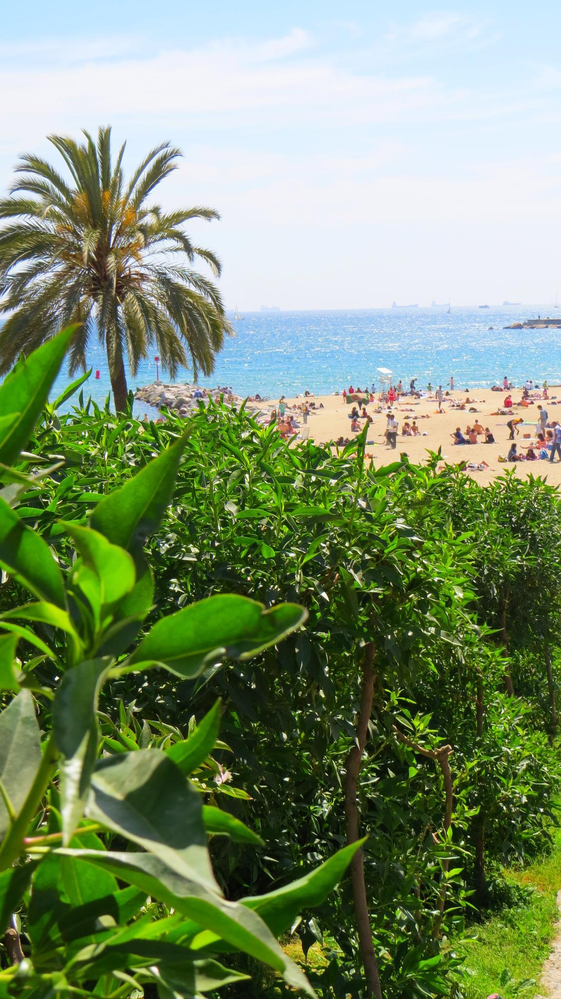 plaże w Barcelonie