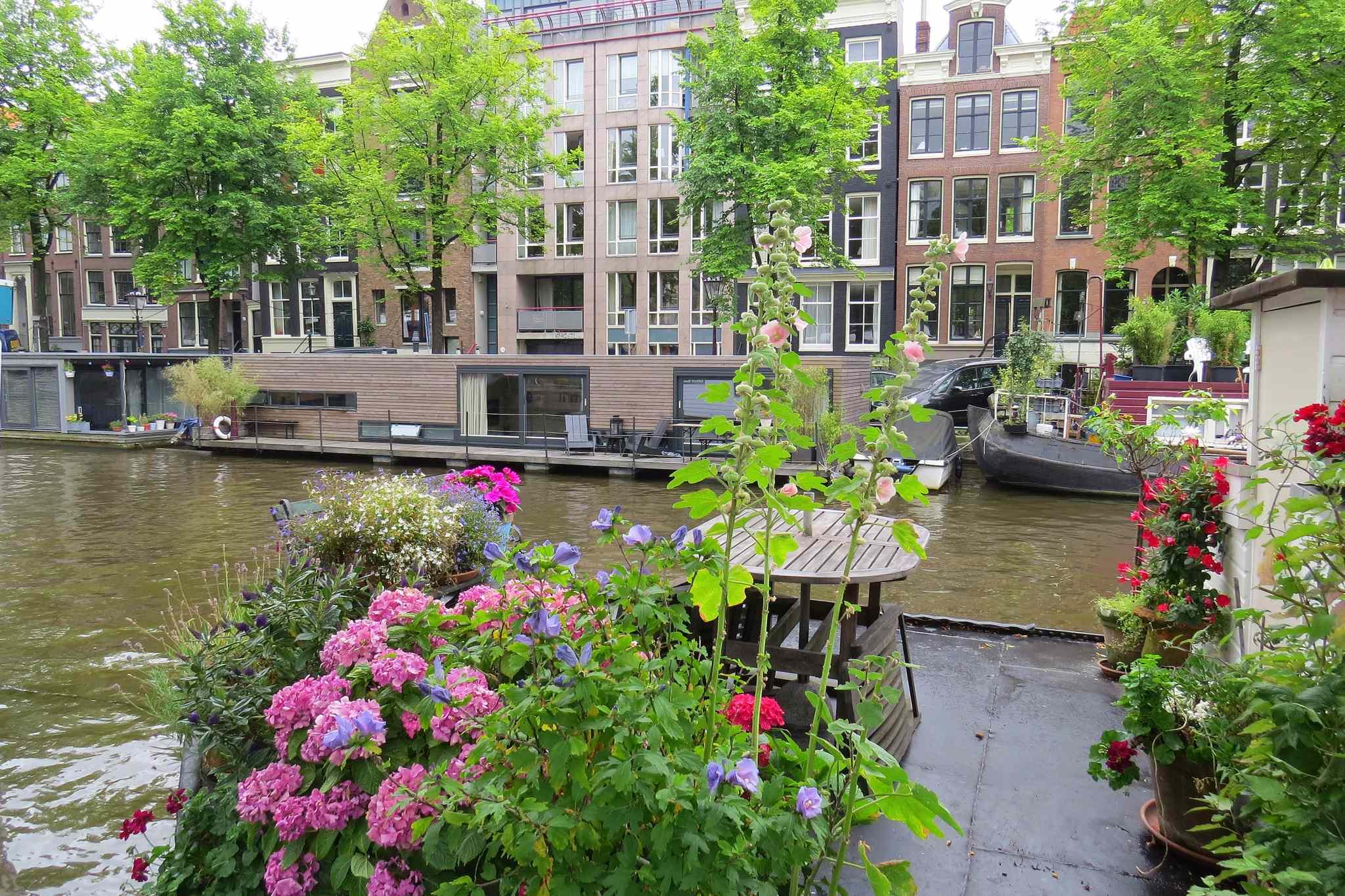barki w Amsterdamie