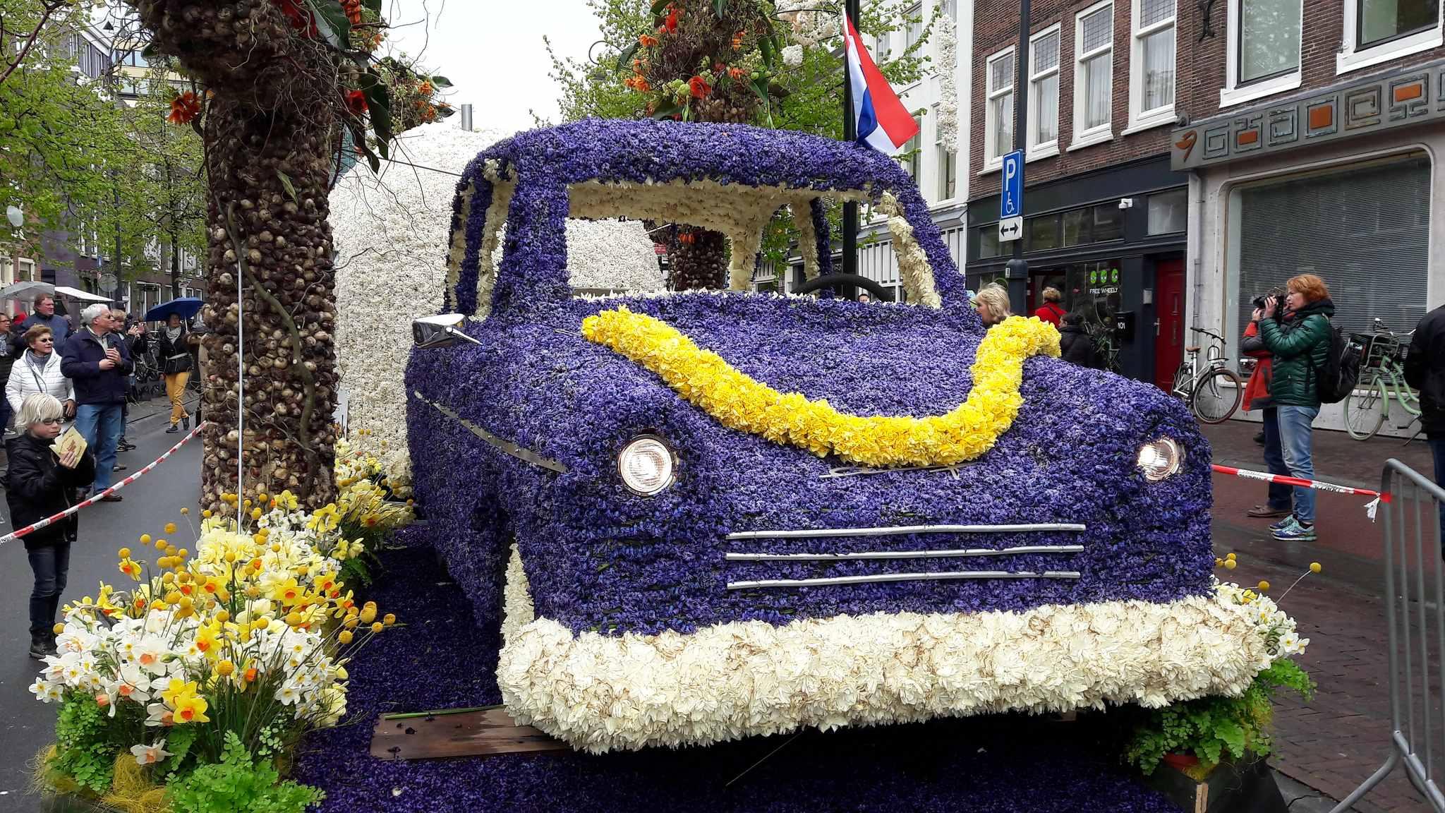 parada kwiatów w holandii