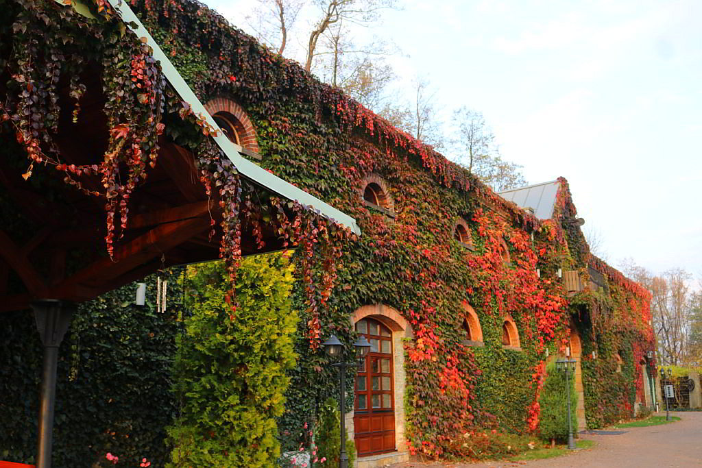 wyjątkowe hotele w Polsce