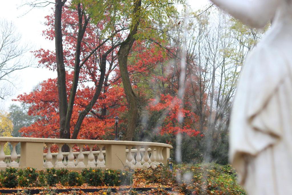 manor house ogród