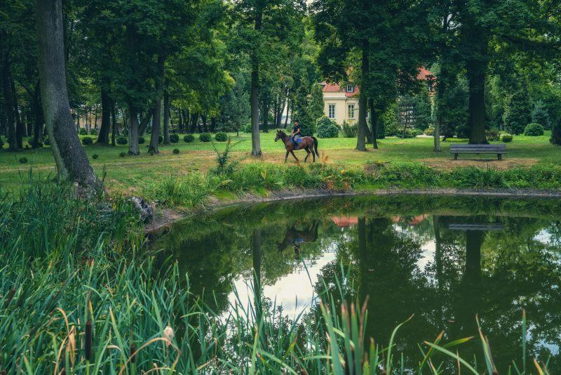 Pałac Alexandrinum park