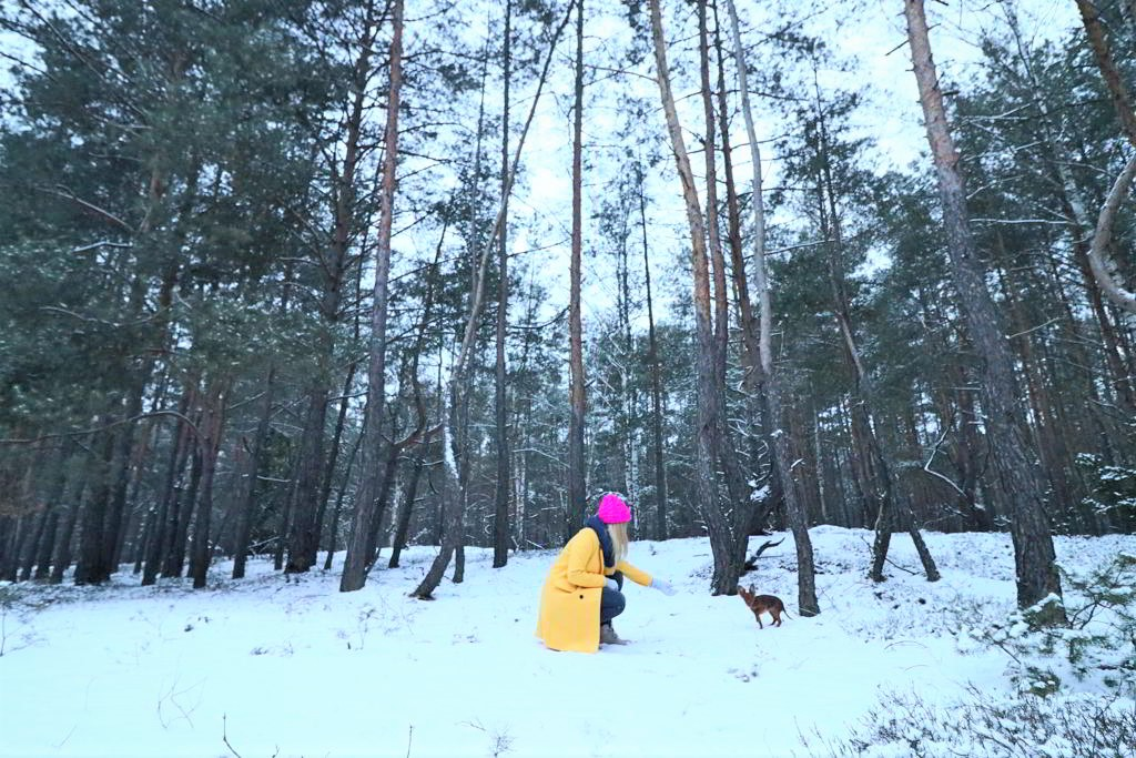 życie na wsi las spacer