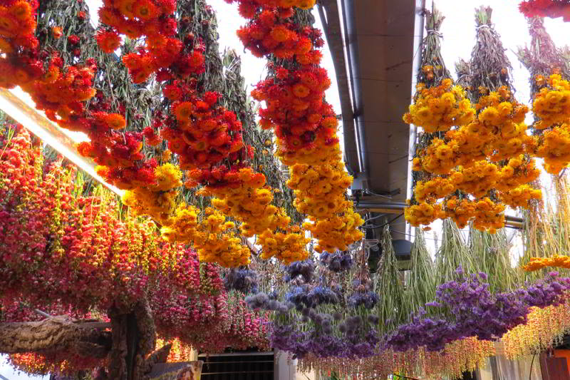co zobaczyć w amsterdamie bloemenmarkt