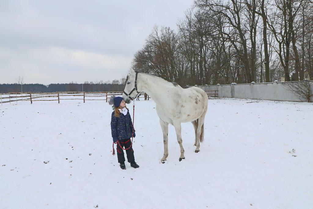ferie pod warszawą konie