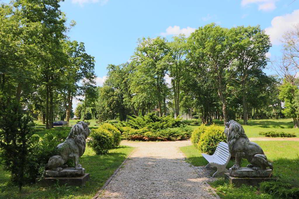 wyjątkowy hotel ogród