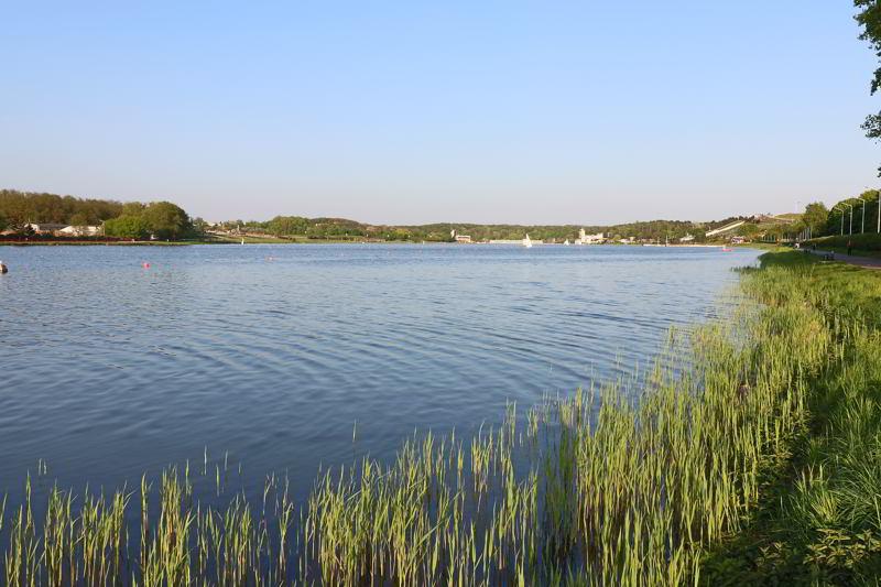 Co warto zobaczyć w Poznaniu Jezioro Maltańskie