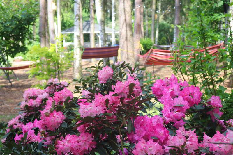 relaks dla dwojga ogród
