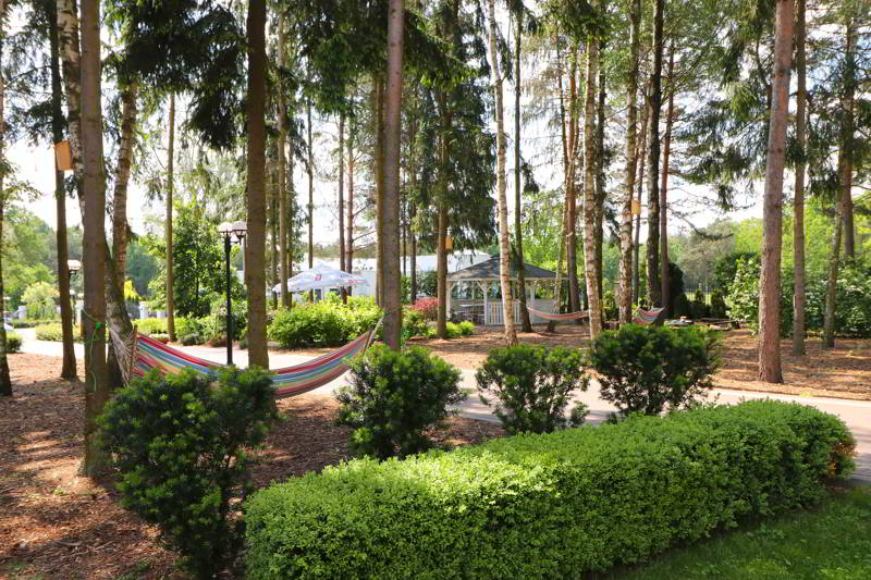 relaks dla dwojga ogród hamaki