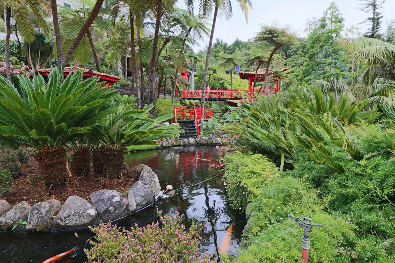 Funchal Monte ogród