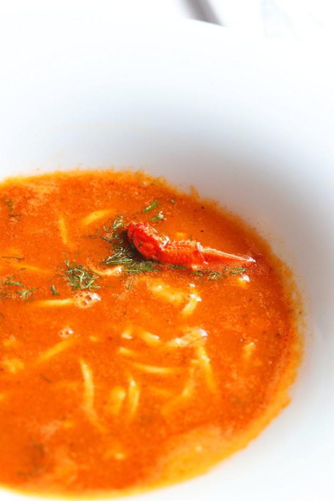 hotel robert's port zupa