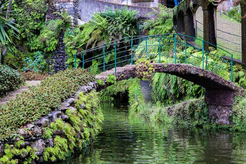 najpiękniejsze ogrody na świecie ogród tropikalny madera