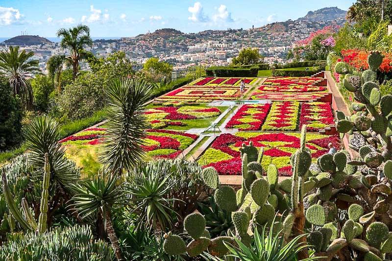 najpiękniejsze ogrody świata ogród botaniczny madera