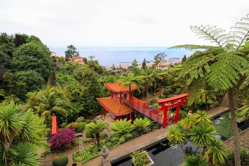 ogród tropikalny Madera