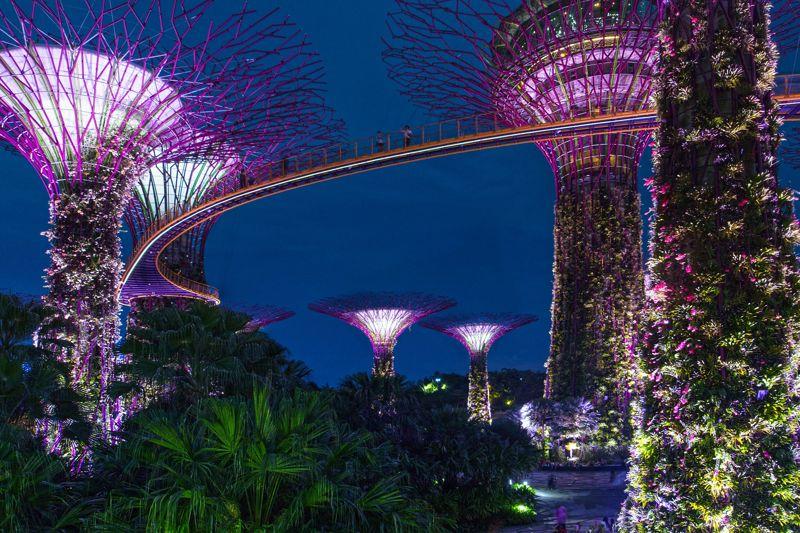 ogrody świata gardens by the bay singapur