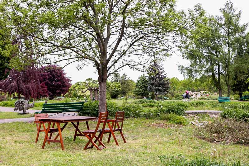 ogród botaniczny powsin ogród bylinowy