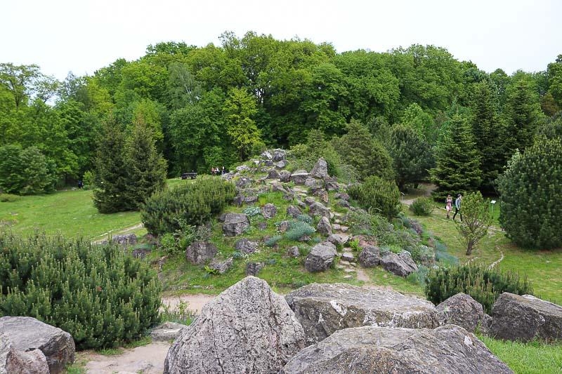 ogród botaniczny w powsinie roslinność górska