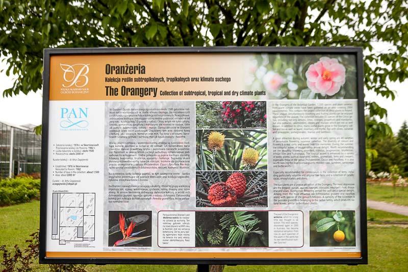 tablica informacyjna oranżeria ogród powsin