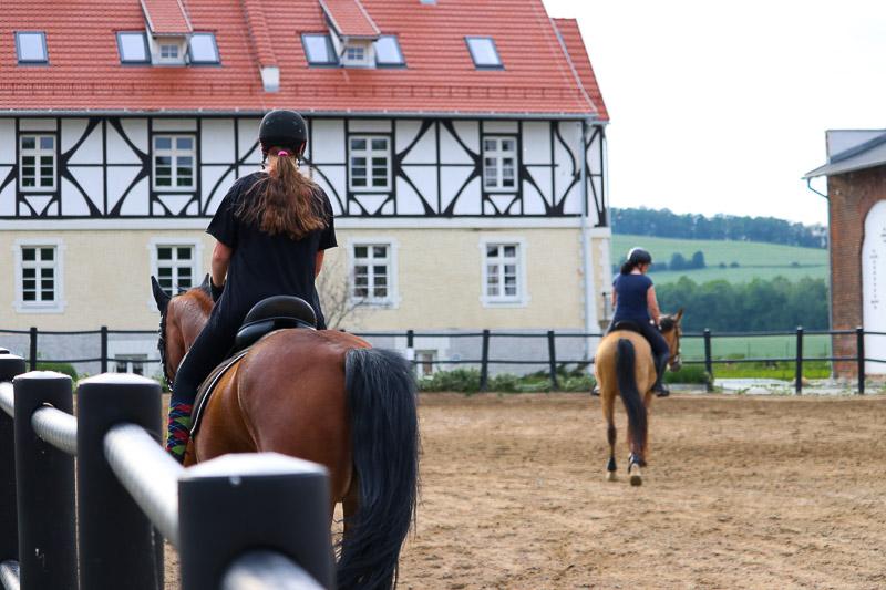 Dworzysko konie