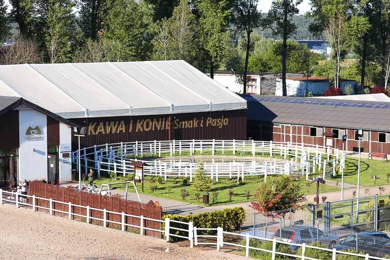 hotel darboven Rumia stadnina koni