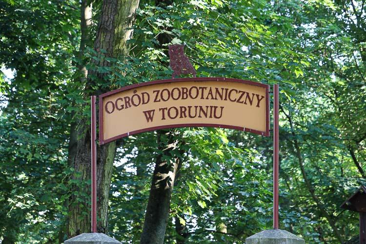 co warto zobaczyć w toruniu ogród zoobotaniczny