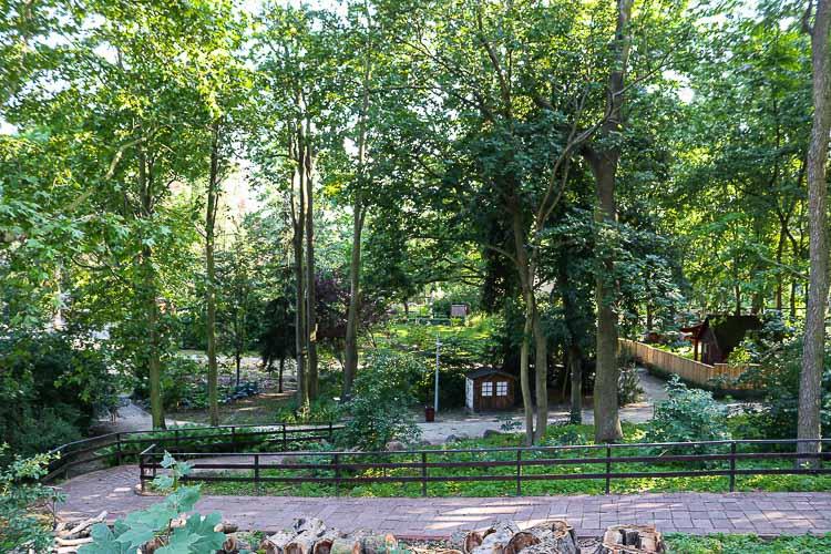toruń ogród zoobotaniczny
