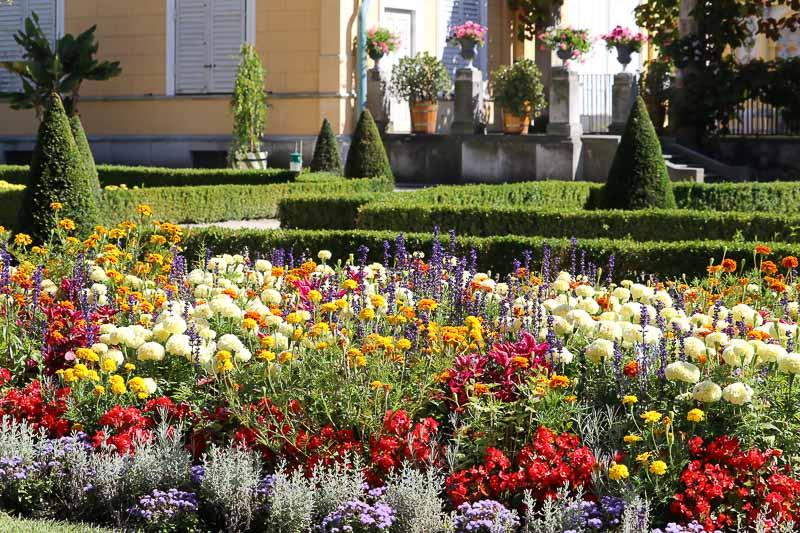 pałac w Wilanowie ogród północny