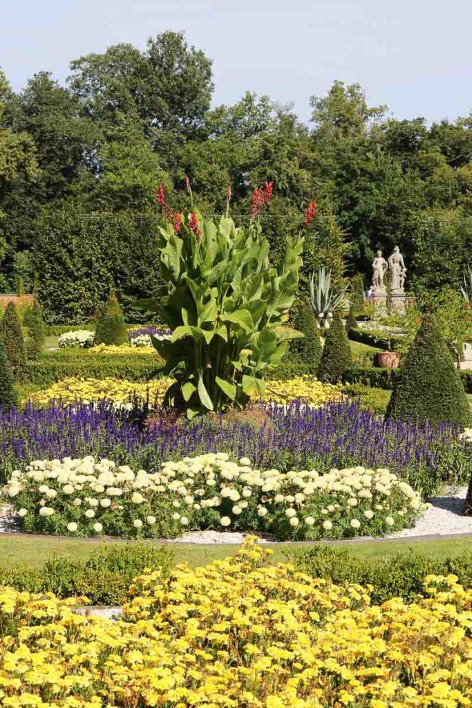 pałac Wilanów ogród północny