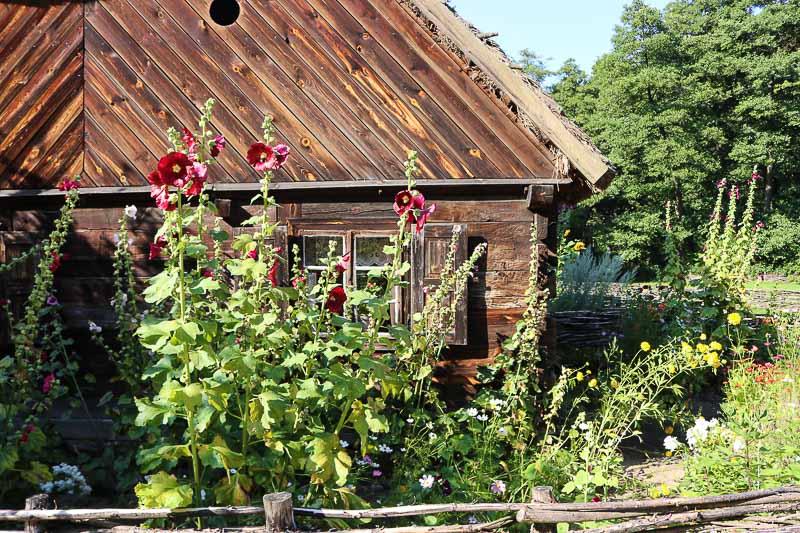 skansen w Sierpcu chałupa ze wsi Drwały