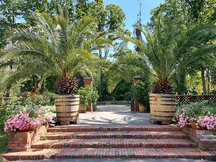 wilanów pałac ogród przy oranżerii