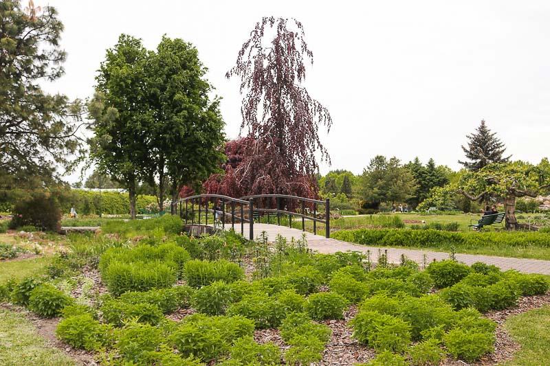 co zwiedzić na mazowszu ogród botaniczny