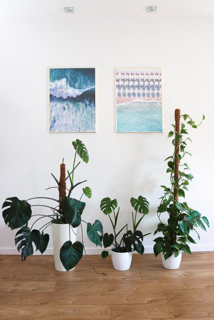 porządki wiosenne zmiana dekoracji ścian