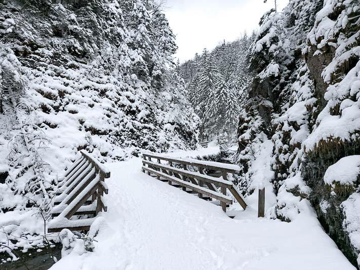dolina białego szlak na sarnią skałę