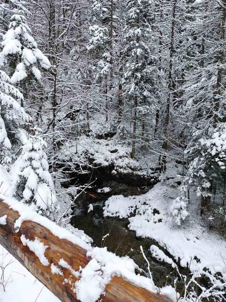 biały potok w dolinie białego