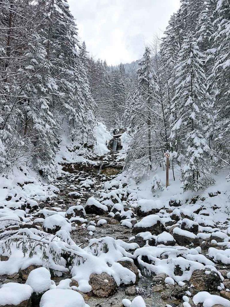 sarni wodospad dolina białego