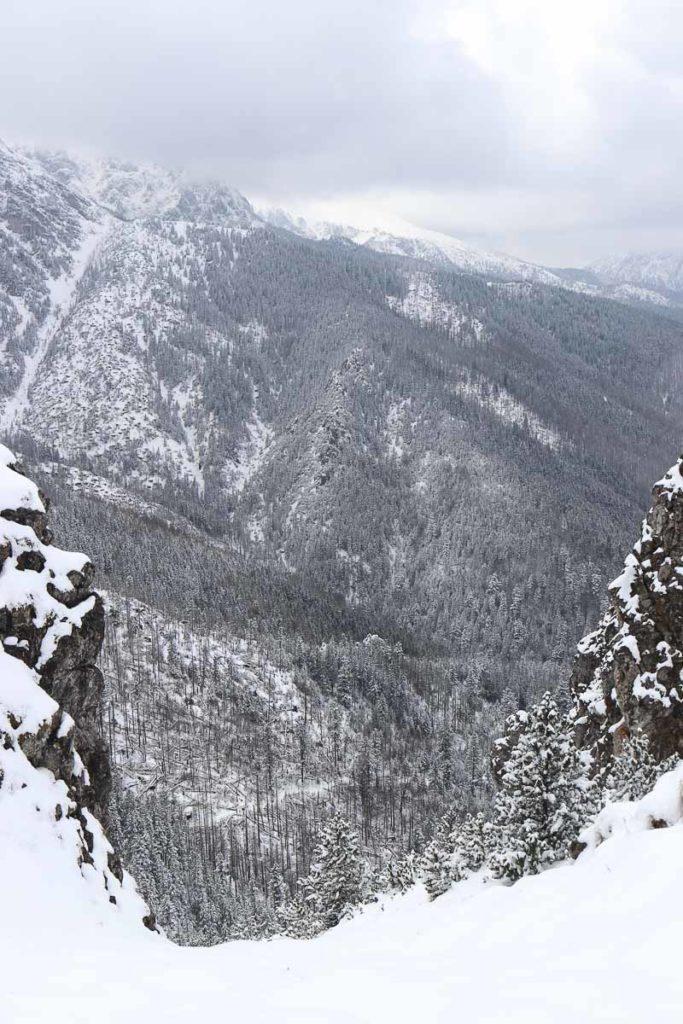 sarnia skała tatry zachodnie